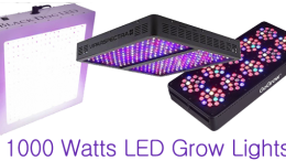 1000 Watt LED Grow Lights