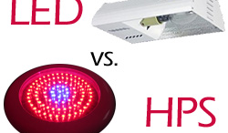 LED vs HPS Lights