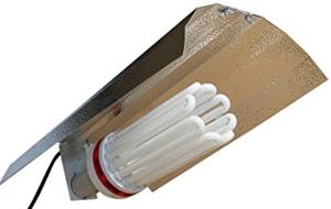 Apollo Horticulture 250 Watt CFL Compact Fluorescent Grow Light Bulb System