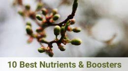 Best Bloom Booster Fertilizer