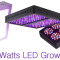 Top 10 Best 1000 Watt LED Grow Lights Reviews