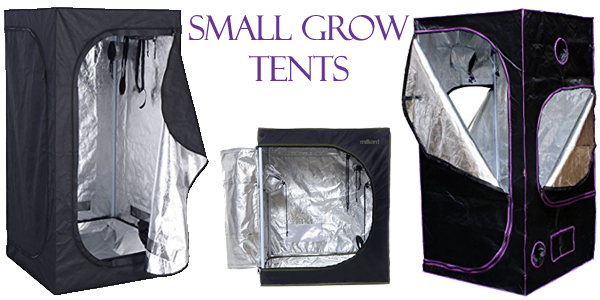Best Small Grow Tents