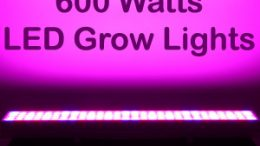600 Watt Grow Lights
