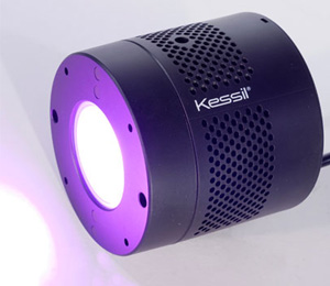 Kessil LED Grow Light Review