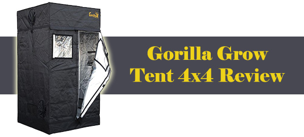 Gorilla Grow Tent 4x4 Review