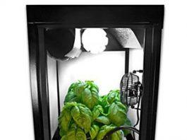 SuperBox CFL Smart Grow Box Review