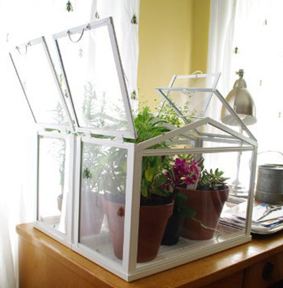 Ikea Mini Greenhouse